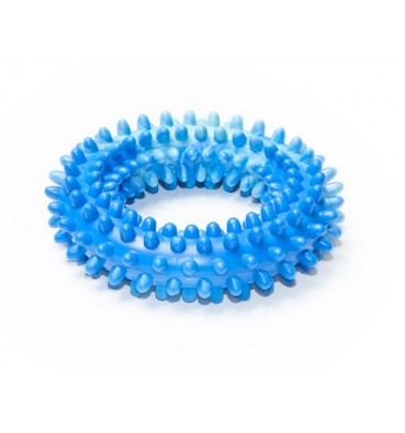 Dog Toy Ring no 2 medium