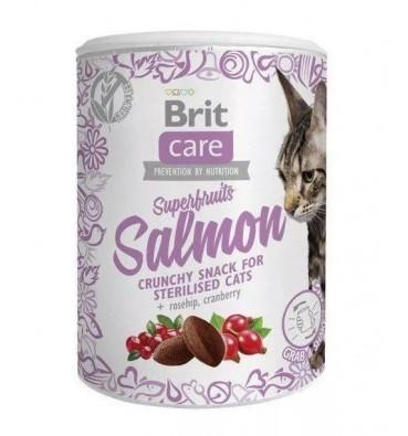 Cat's snacks Salmon 100g